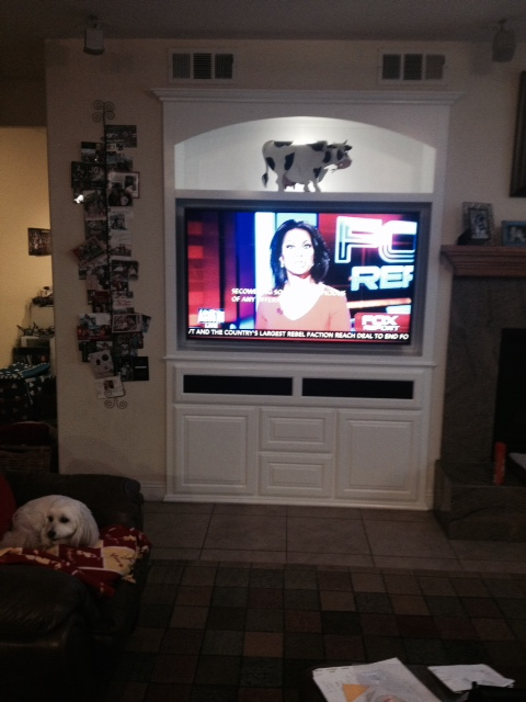 Built in TV stand / wall unit in Corona CA